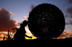 "A member of the public walks past a sculpture at sunset that is part of the annual outdoor exhibition known as ""Sculpture by the Sea"" near Bondi Beach in Sydney, Australia October 19, 2016 which showcases sculptures by local and international artists along the coastline between Bondi and Tamarama beaches. REUTERS/David Gray"