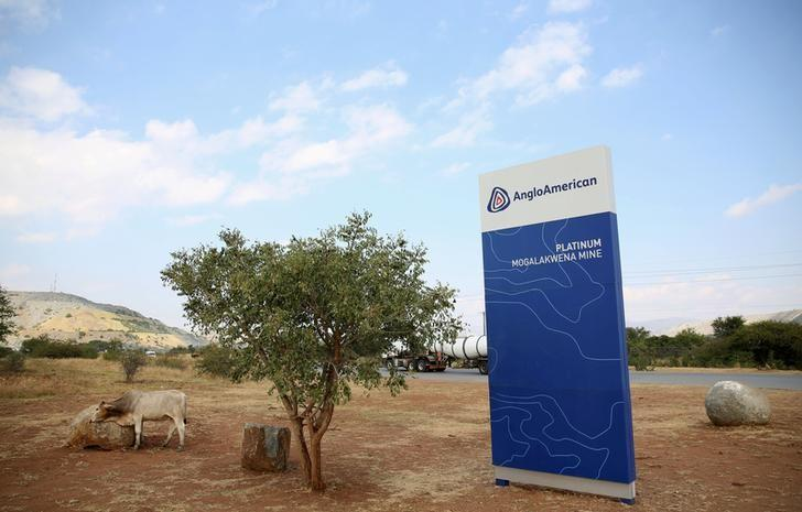 A cow is seen near the AngloAmerican sign board outside the Mogalakwena platinum mine in Mokopane , north-western part of South Africa , Limpopo province May 18, 2016. REUTERS/Siphiwe Sibeko/File Photo