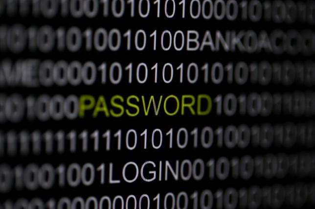 The word 'password' is pictured on a computer screen in this picture illustration taken in Berlin May 21, 2013.  REUTERS/Pawel Kopczynski