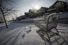 A shopping cart is frozen over, after an ice storm in Toronto, December 27, 2013.  REUTERS/Mark Blinch