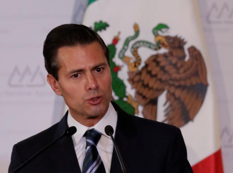 Mexico's President Enrique Pena Nieto gives a speech during a National Agricultural Council event at a hotel in Mexico City, Mexico February 2, 2017. REUTERS/Henry Romero