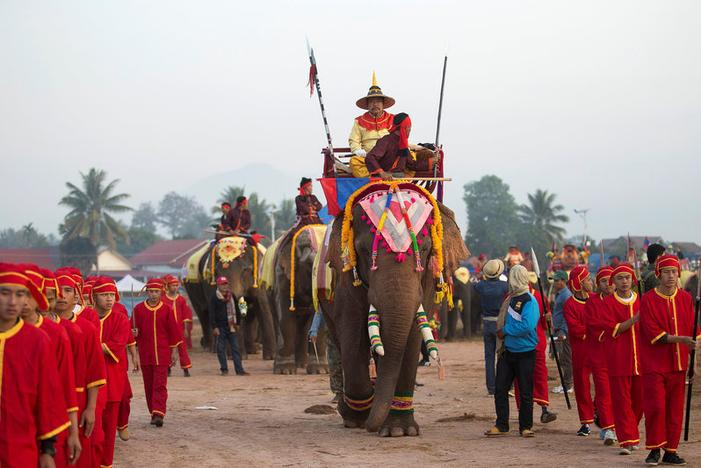 Elephants take part in a parade during Elephant Festival, which organisers say aims to raise awareness about the animals, in Sayaboury province, Laos February 18, 2017. Image: REUTERS/Phoonsab Thevongsa