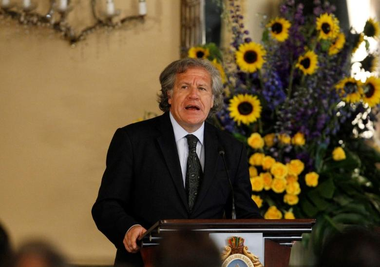Organization of American States (OAS) Secretary-General Luis Almagro addresses the audience during an official visit to Honduras, in Tegucigalpa, January 17, 2017. REUTERS/Jorge Cabrera/Files