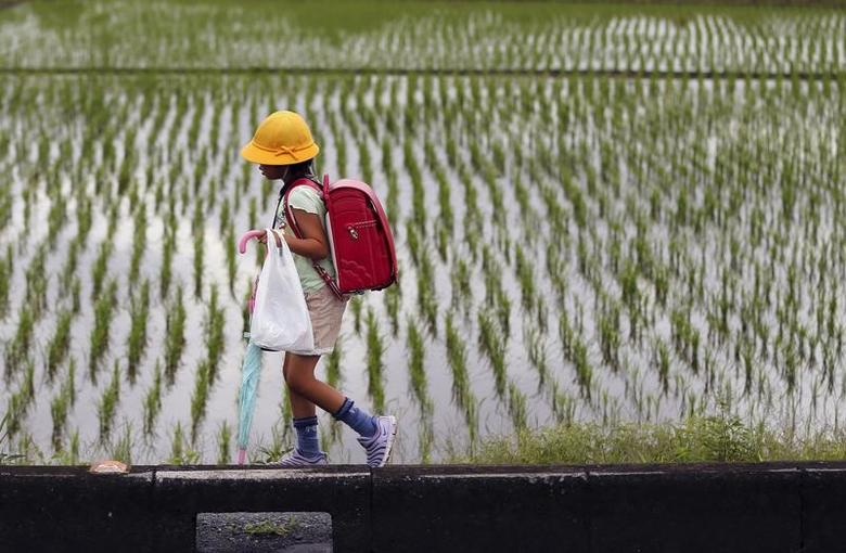 An elementary school student walks past next to a rice paddy field in Kazo, north of Tokyo July 1, 2015. REUTERS/Issei Kato