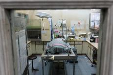 """السلحفاة اومسين أو """"الحصالة"""" ترقد في غيبوبة بغرفة الرعاية المركزة في بانكوك يوم الاثنين. تصوير: اتيت بيراونجميتا - رويترز."""