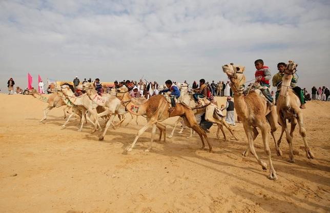 3月22日、エジプト東部の都市イスマイリアの郊外で21日、毎年恒例のラクダ祭りが開催され、砂漠の走路でラクダレースが行われた。写真は21日撮影(2017年 ロイター/Amr Abdallah Dalsh)