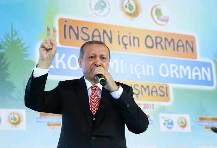 Turkish President Tayyip Erdogan speaks during a meeting in Ankara, Turkey, March 21, 2017. Kayhan Ozer/Presidential Palace/Handout via REUTERS