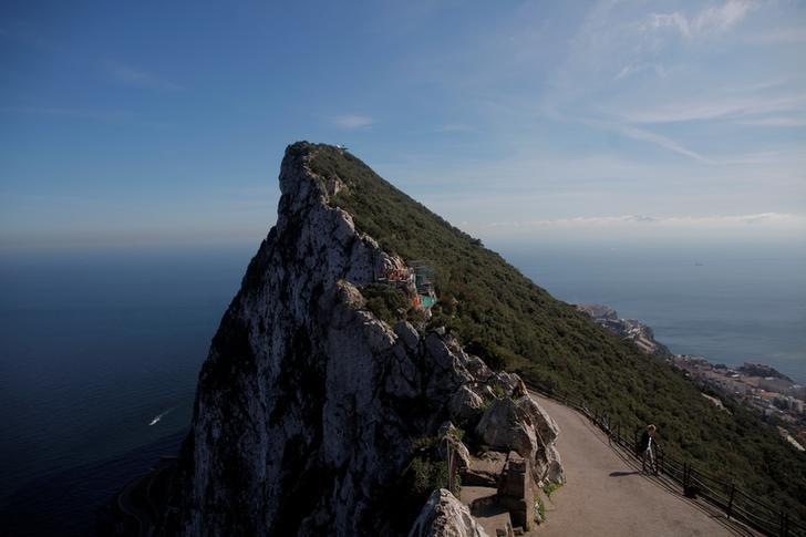 A tourist watches monkeys on the top of the Rock in the British overseas territory of Gibraltar, historically claimed by Spain, March 29, 2017. REUTERS/Jon Nazca/Files