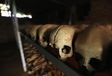 Preserved skulls are spread out on a metal shelf in a Catholic church in Nyamata April 9, 2014.   REUTERS/Noor Khamis