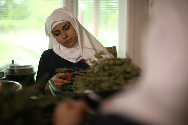 California ''weed nun'' India Delgado, who goes by the name Sister Eevee, trims hemp in the kitchen at Sisters of the Valley near Merced, California, U.S., April 18, 2017.  REUTERS/Lucy Nicholson