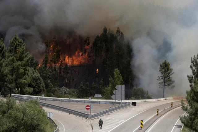 Fire and smoke is seen on the IC8 motorway during a forest fire near Pedrogao Grande, in central Portugal, June 18, 2017.  REUTERS/Miguel Vidal