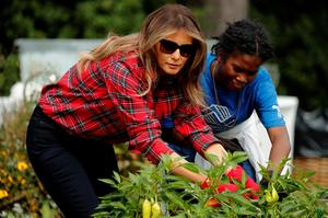 Melania in the garden