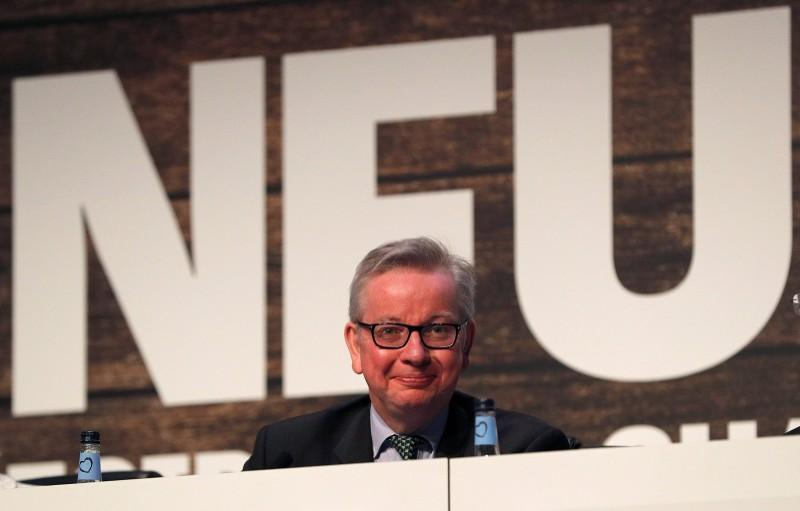 Michael Gove the Secretary of State for Environment, Food and Rural Affairs smiles after speaking during the National Farmers Union annual conference in Birmingham, Britain February 20, 2018.  Darren Staples
