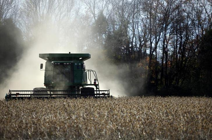 A worker harvests soybeans at a farm north of Birmingham, Alabama November 13, 2009.  Carlos Barria