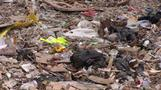 Hong Kong's landfills may be exhausted in two years