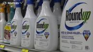 California says weed killer chemical causes cancer