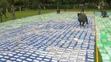 Colombia makes record $360 million cocaine bust