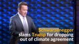 Schwarzenegger slams Trump for dropping out of climate accord