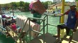 سائحون يغادرون جزيرة بوراكاي الفلبينية بعد قرار إغلاقها لستة أشهر