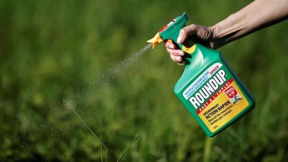 U.S. judge affirms Monsanto weed-killer verdict, slashes damages
