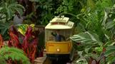 All aboard to the Holiday Train Show at the New York Botanical Garden