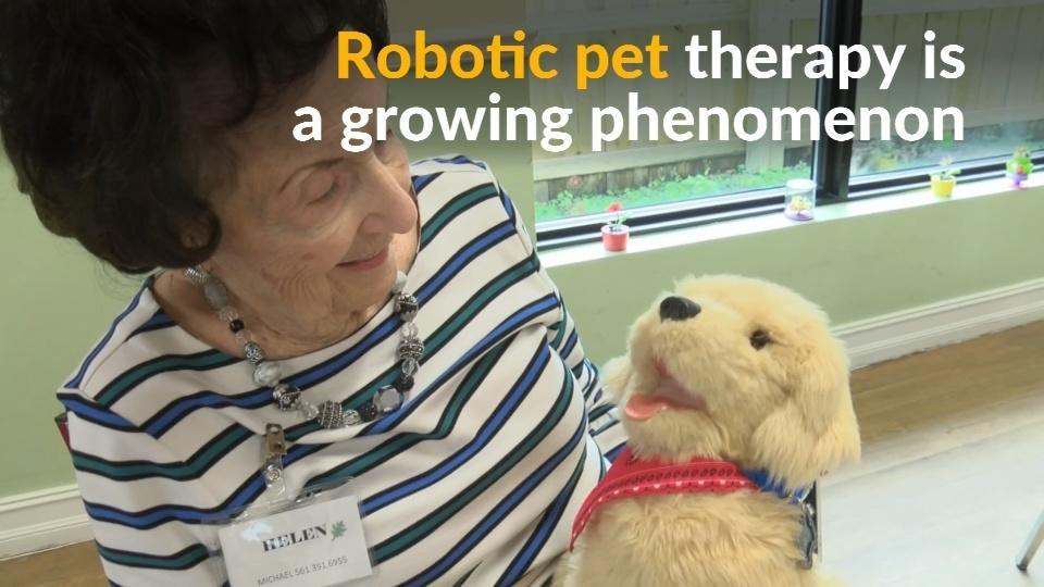 Robot animals serving as pets for dementia patients