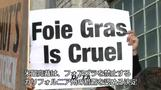 フォアグラは珍味か動物虐待か、米最高裁が生産者の訴え棄却(字幕・17日)