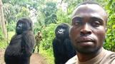 Ranger erklärt sein Gorilla-Selfie