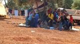 シリア北西部で再び戦闘激化、オリーブの木陰が唯一の避難場所(字幕・18日)
