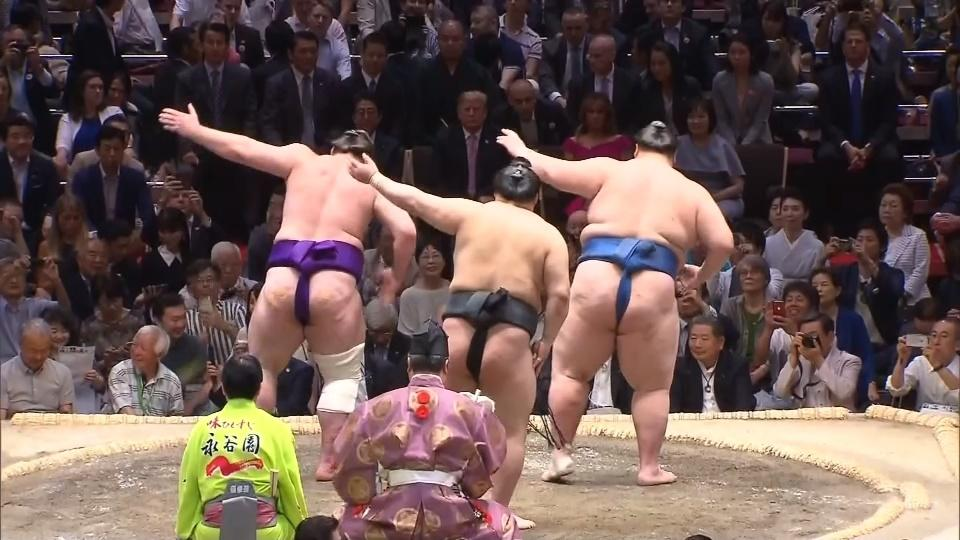 Trump first U.S. president to watch sumo in sport's homeland
