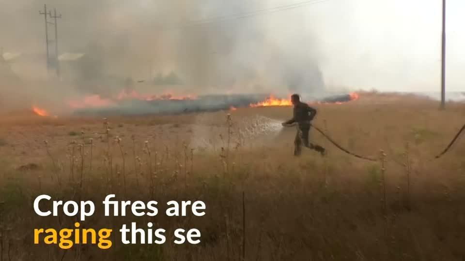 Wheat crops ablaze in Iraq