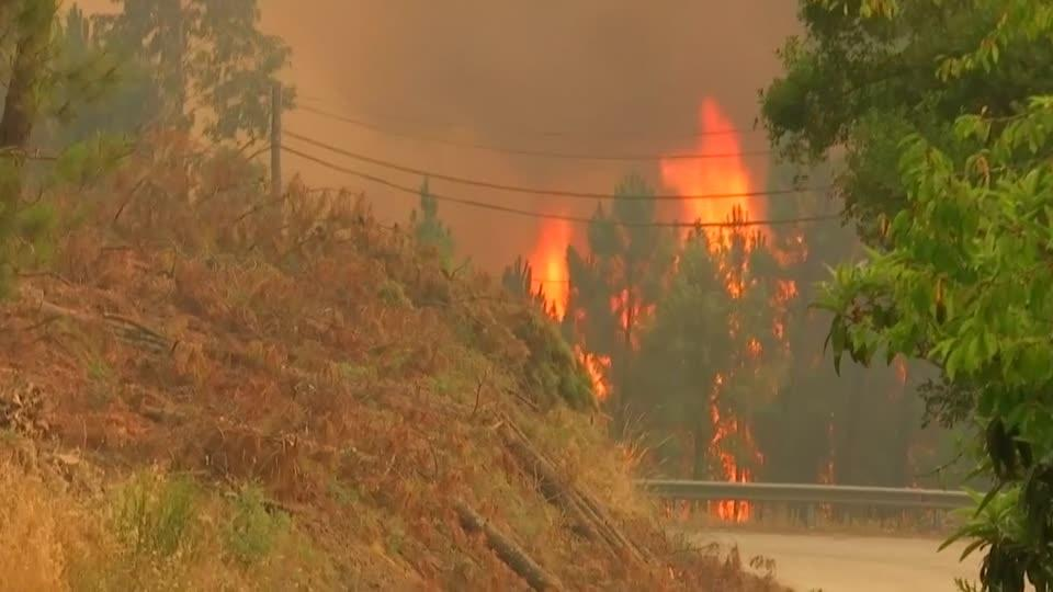 Residents helpless as wildfires rage in Portugal