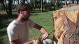شاب إيطالي يحول جذوع الأشجار الميتة في روما إلى منحوتات فنية