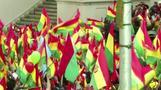 Bolivia protesters celebrate Morales' resignation
