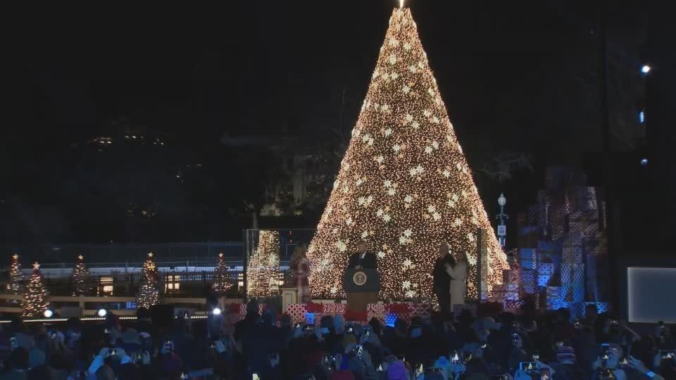 The Trumps light National Christmas Tree