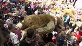 Tausende Bären landen in Eishockeyarena