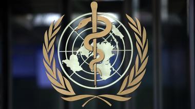 除钻石公主号邮轮外 中国境外新冠病例未大幅增加--WHO