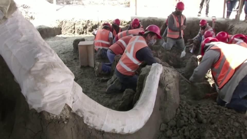 Mexico's Ice Age Mammoth boneyard
