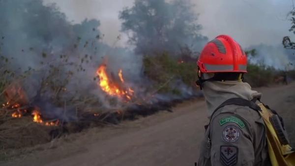 7月から燃え続ける、世界最大の湿地帯・ブラジルのパンタナル(字幕・17日)