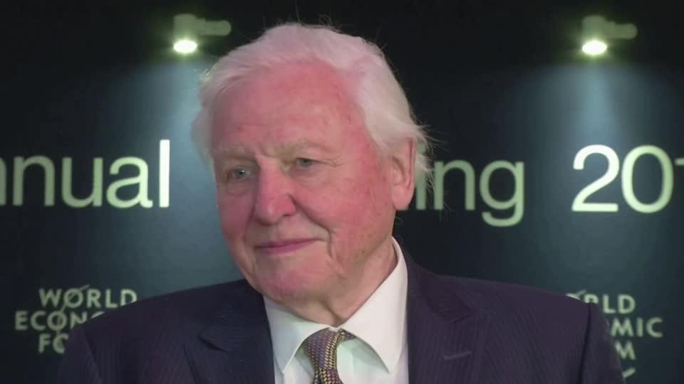 Attenborough: $500 billion a year for nature