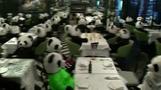 パンダだらけのレストラン、ロックダウンに「無言の抗議」 ドイツ(字幕・25日)
