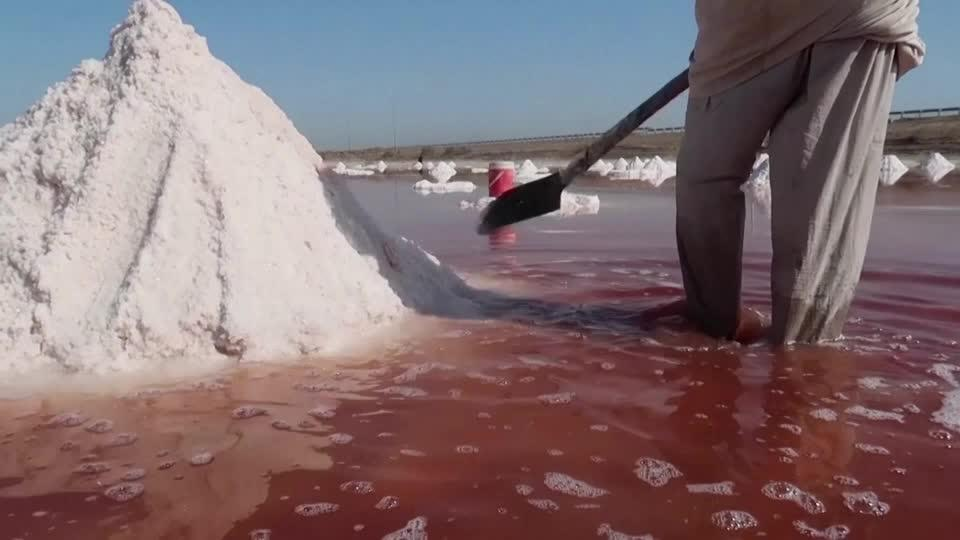 Salt-harvesting helps make ends meet in southern Iraq