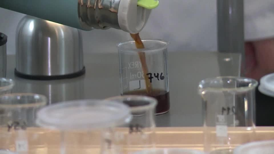 Can lab-made coffee pass the taste test?