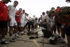 <p>Atletas do Egito sacrificaram uma vaca durante um treinamento na sexta-feira para ter sorte na Copa das Nações Africanas. Foto de sacrifício durante treino em Kumasi, 1o de fevereiro. Photo by Bruno Domingos</p>