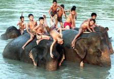 <p>Immagine d'archivio di un campo vacanze per l'addestramento degli elefanti in Thailandia. NWA/PB</p>