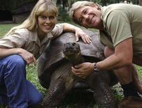 "<p>Crocodile Hunter Steve Irwin (R) and his wife Terri pose with a tortoise in this undated handout photo from their zoo in Beerwah, north of Brisbane. Australian tax officials are probing the affairs of late ""Crocodile Hunter"" Irwin and his wife Terri over an offshore scheme involving their Australia Zoo wildlife business, the zoo said on Thursday. REUTERS/Australia Zoo/Handout/Files</p>"