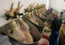 <p>Una fattoria del Texas dove si alleavano e macellano polli, che vengono appesi per le zampe e infilati negli imbuti prima di essere sgozzati e dissanguati. Foto d'archivio. REUTERS/Jessica Rinaldi (UNITED STATES)</p>