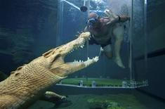 <p>A thrill-seeker tourist dives in a cage partially immersed in a crocodile pen in Crocosaurus Cove in Darwin August 28, 2008. REUTERS/Wade Huffman</p>