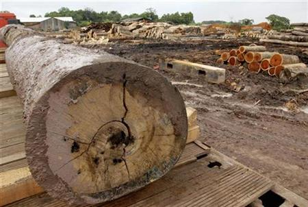 Logs that were illegally cut from the Amazon rain forest are loaded onto trucks during an operation by Para state district attorneys to transport them to the state capital, near Tailandia, 180 km (112 miles) south of Belem, at the mouth of the Amazon River, February 23, 2008. REUTERS/Paulo Santos