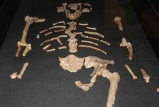 """<p>Picture shows a replica of the remains of a more than 3-million-year-old female hominid known as """"Lucy"""" at the National Museum in Addis Ababa August 7, 2007. REUTERS/Barry Malone</p>"""